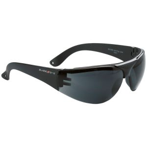 Swiss Eye Lunettes de protection Outbreak à monture noire/verres fumés